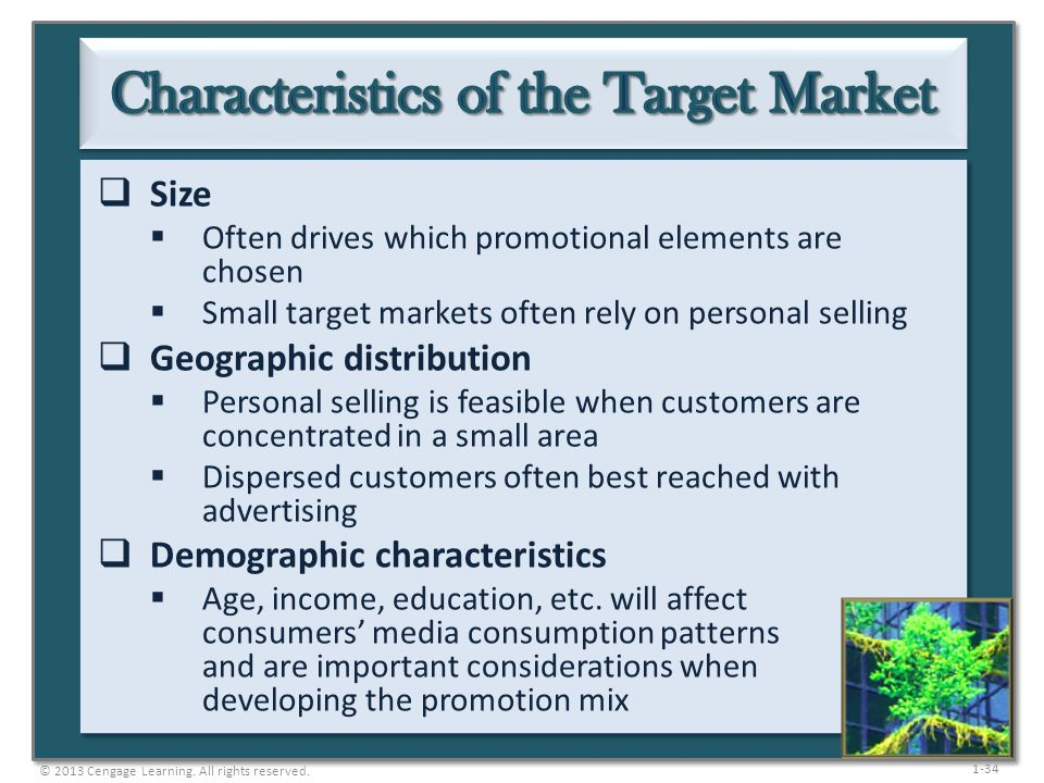 Characteristics of the Target Market