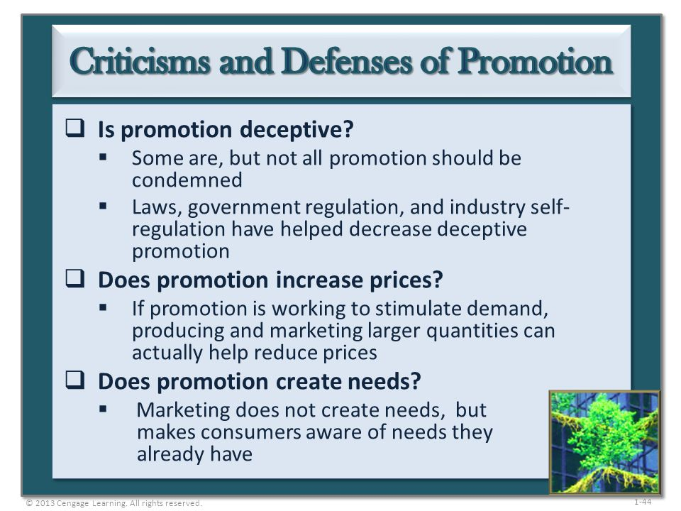 Criticisms and Defenses of Promotion