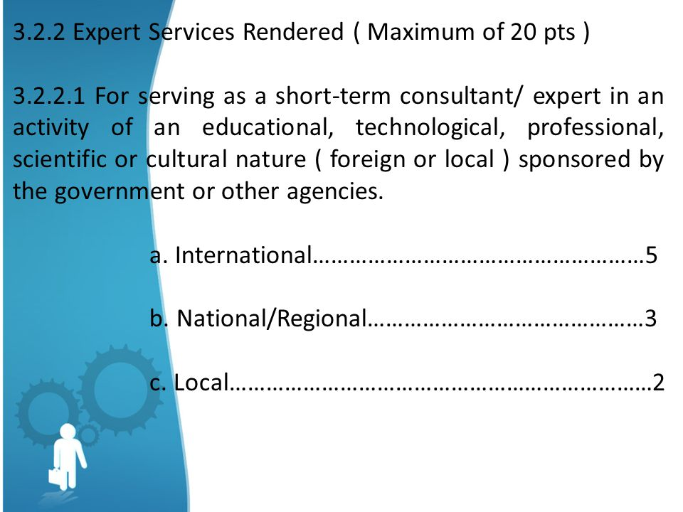 3.2.2 Expert Services Rendered ( Maximum of 20 pts )