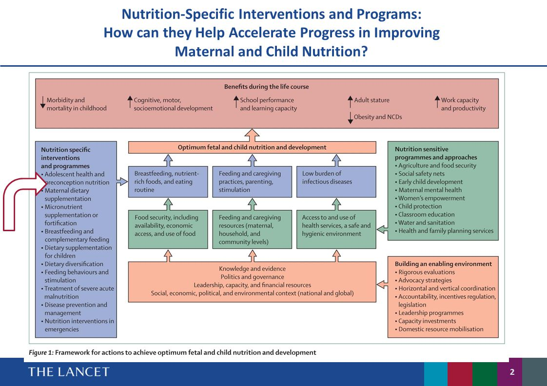 Nutrition-Specific Interventions and Programs: How can they Help Accelerate Progress in Improving Maternal and Child Nutrition