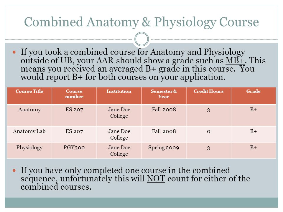 Combined Anatomy & Physiology Course