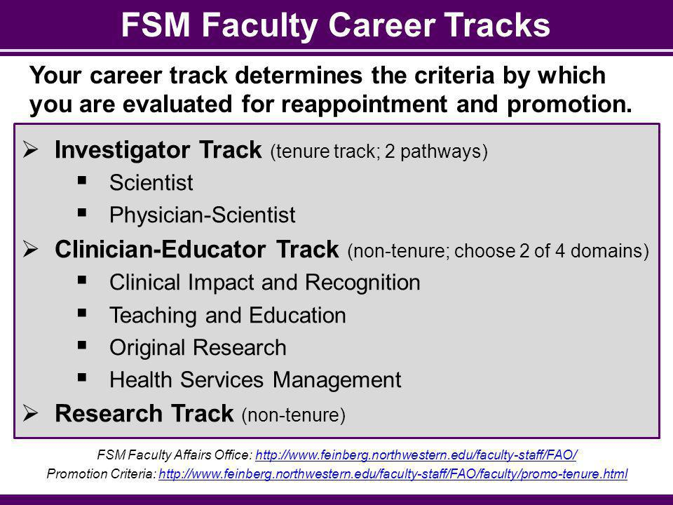 FSM Faculty Career Tracks