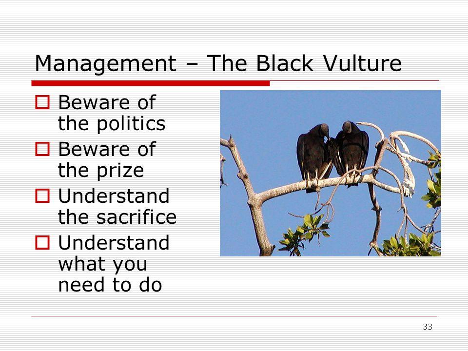 Management – The Black Vulture