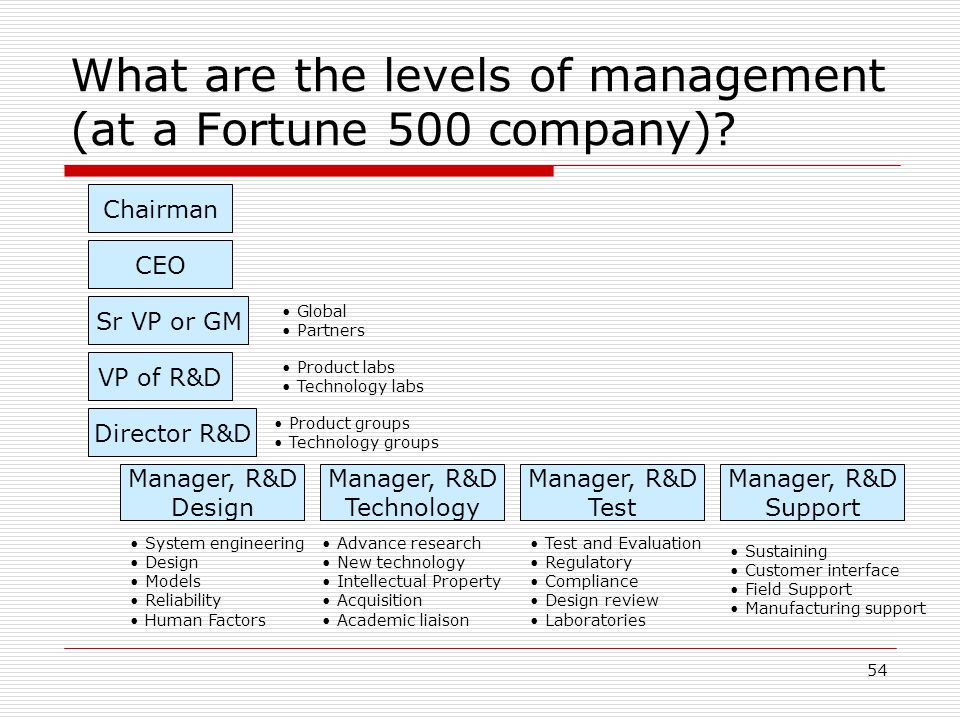 What are the levels of management (at a Fortune 500 company)