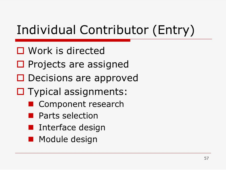 Individual Contributor (Entry)