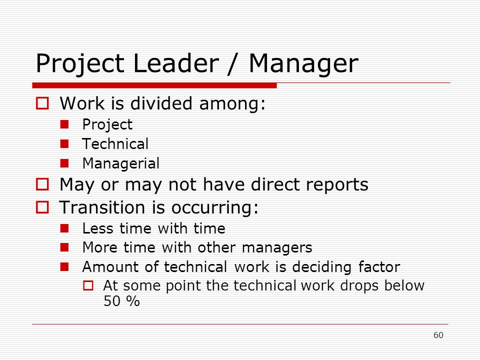 Project Leader / Manager