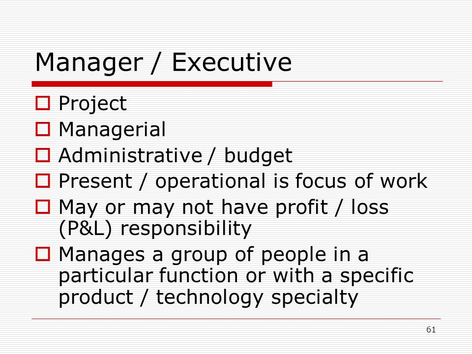 Manager / Executive Project Managerial Administrative / budget