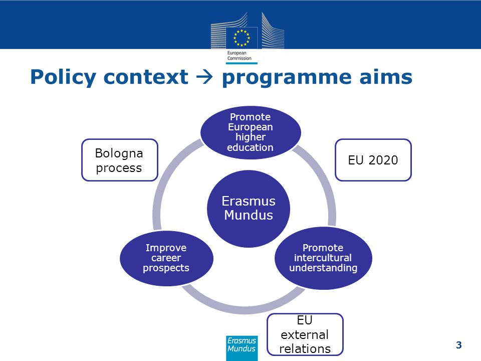 Policy context  programme aims