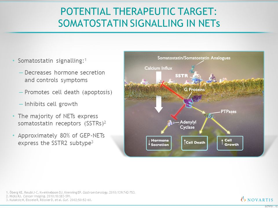 POTENTIAL THERAPEUTIC TARGET: SOMATOSTATIN SIGNALLING IN NETs