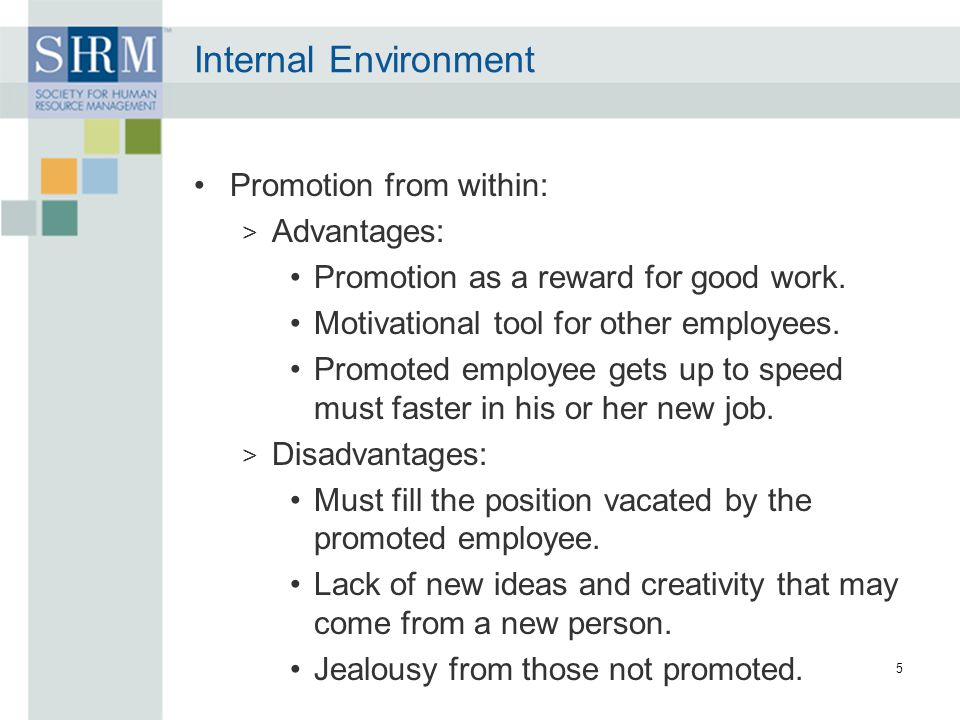 Internal Environment Promotion from within: Advantages: