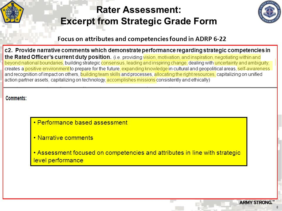 Rater Assessment: Excerpt from Strategic Grade Form