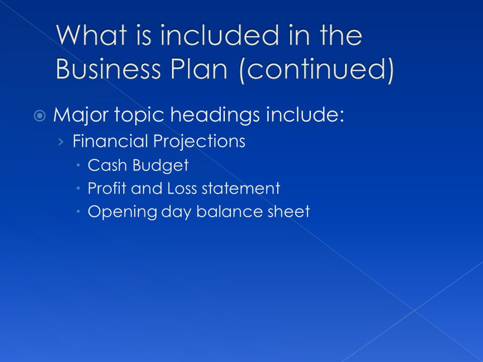 What is included in the Business Plan (continued)