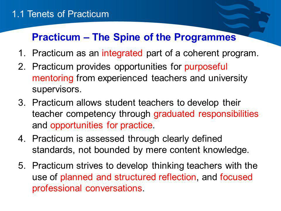 Practicum – The Spine of the Programmes