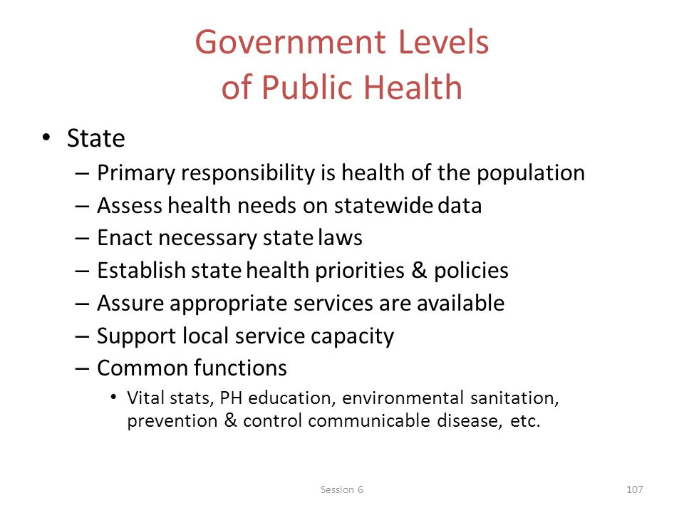 Government Levels of Public Health