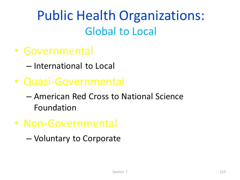 Public Health Organizations: Global to Local