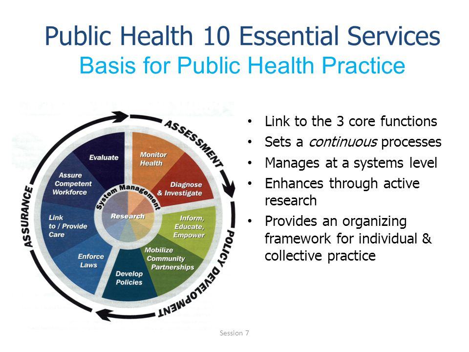 Public Health 10 Essential Services Basis for Public Health Practice