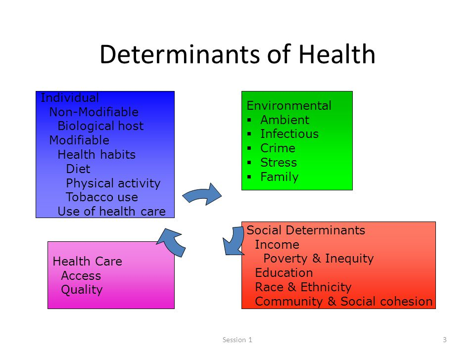 Who Social Determinants Of Health Social Determinants Of