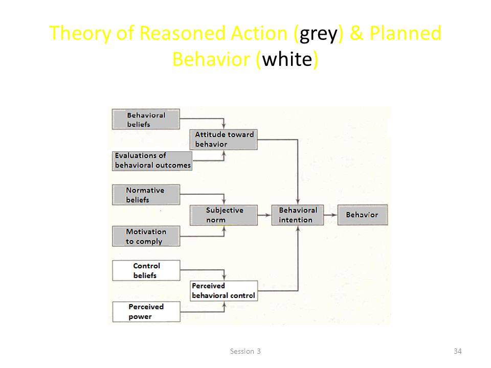 Theory of Reasoned Action (grey) & Planned Behavior (white)