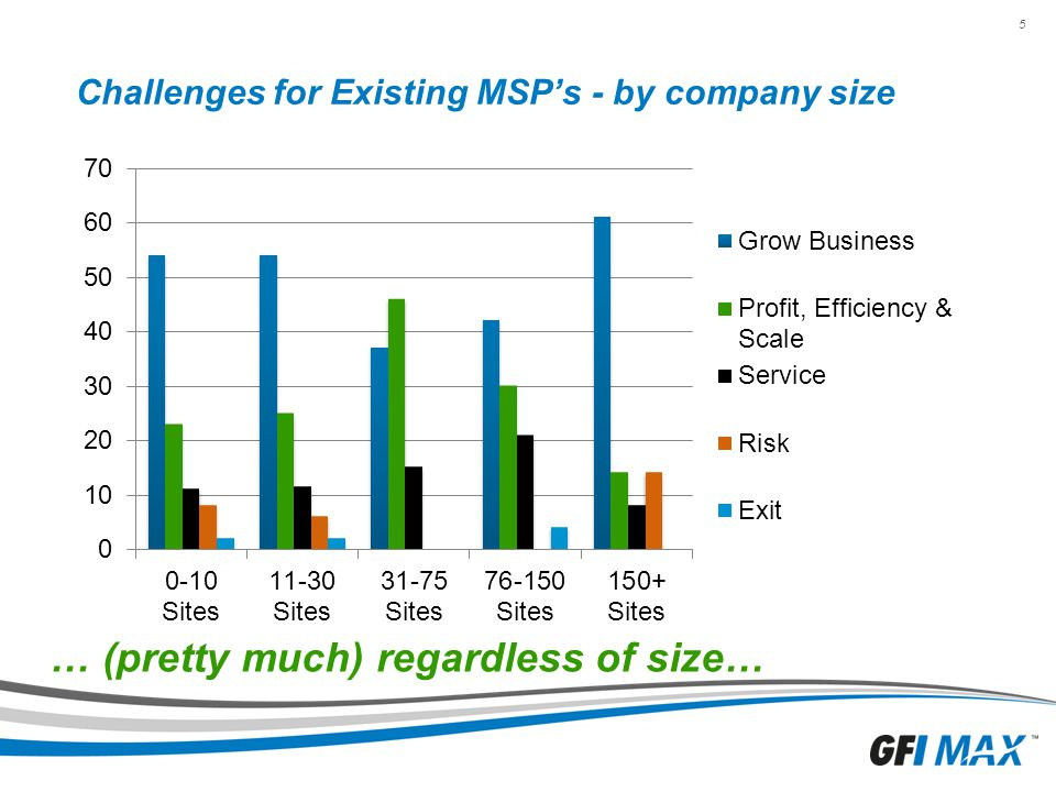Challenges for Existing MSP's - by company size