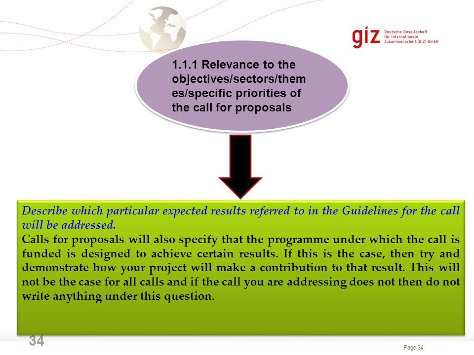 1.1.1 Relevance to the objectives/sectors/themes/specific priorities of the call for proposals