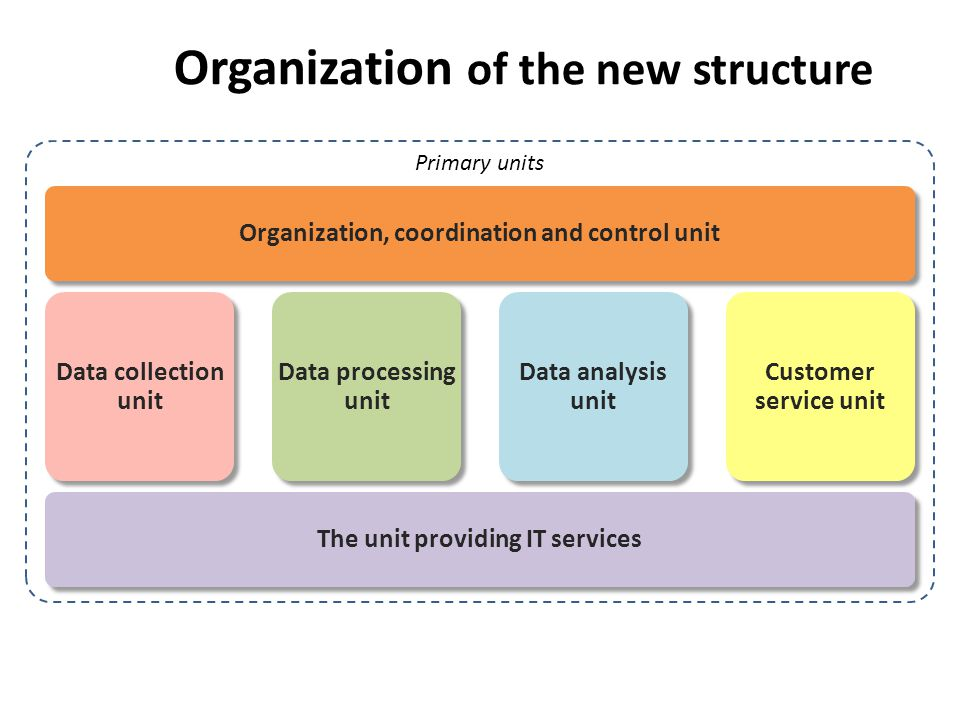 Organization of the new structure