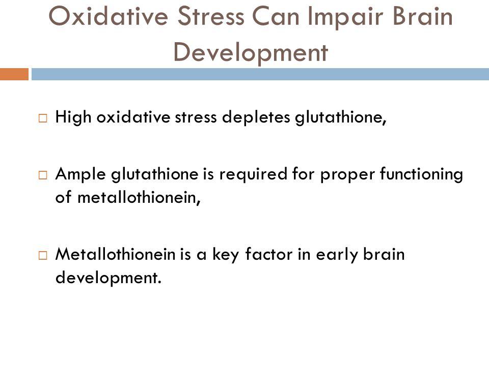 Oxidative Stress Can Impair Brain Development