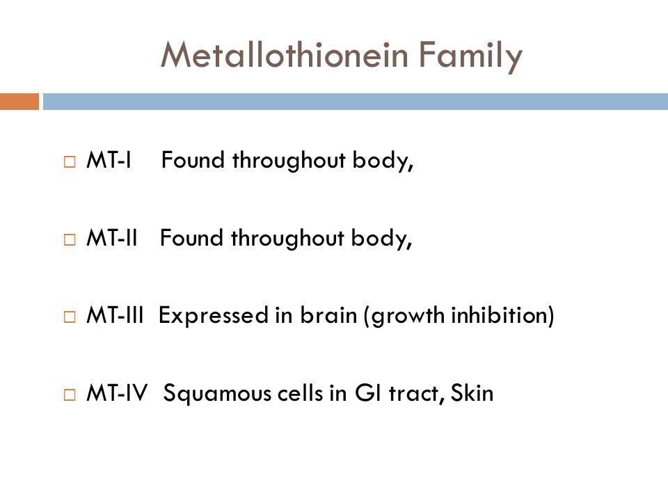 Metallothionein Family