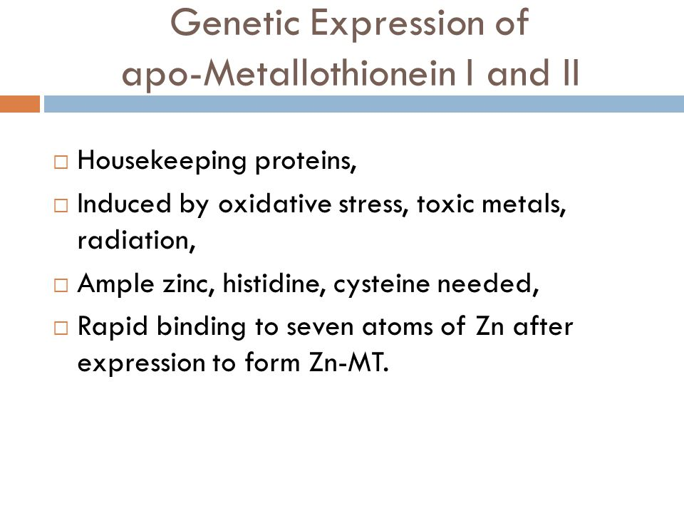 Genetic Expression of apo-Metallothionein I and II
