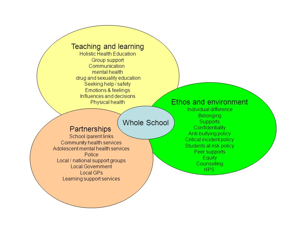 Teaching and learning Ethos and environment Whole School Partnerships