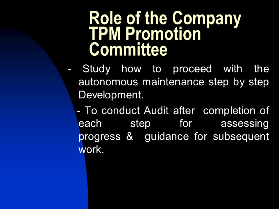 Role of the Company TPM Promotion Committee