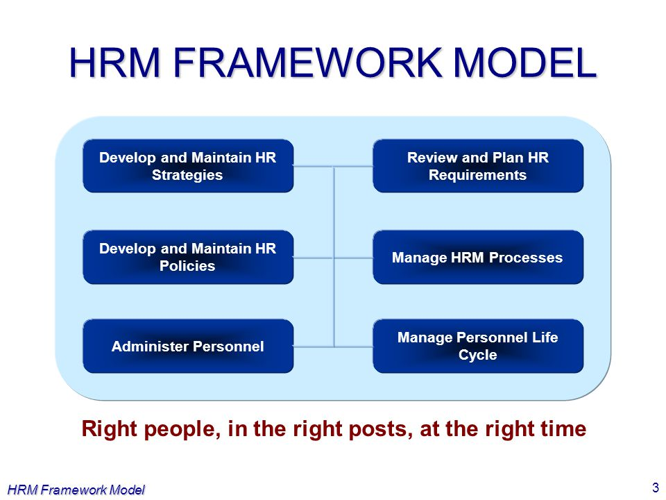 HRM FRAMEWORK MODEL Develop and Maintain HR Strategies. Review and Plan HR Requirements. Develop and Maintain HR Policies.