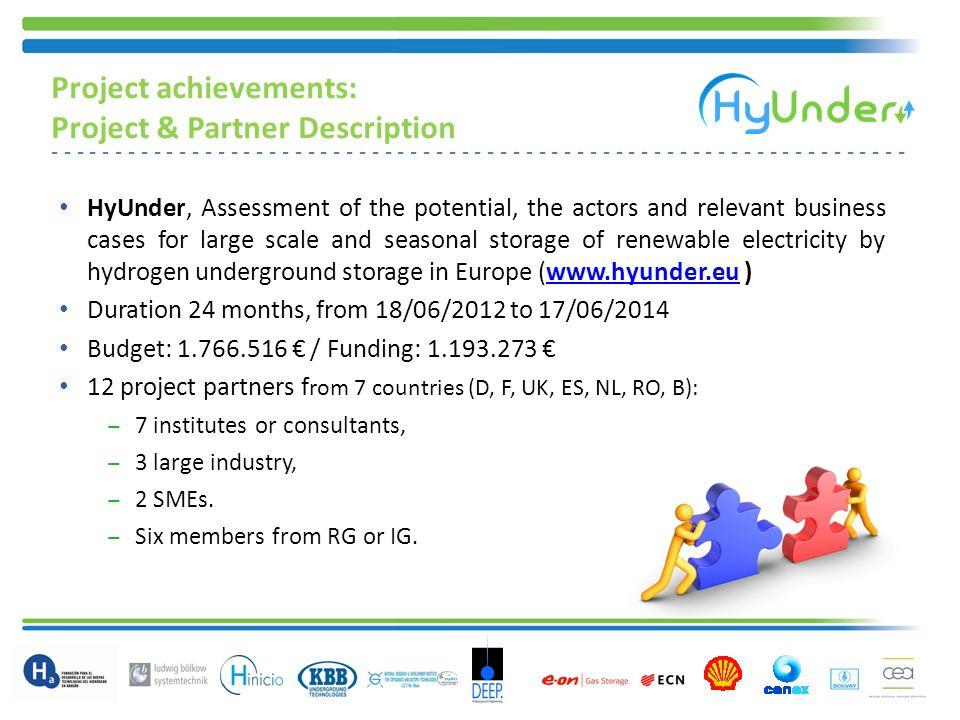 Project achievements: Project & Partner Description