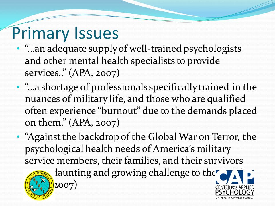 Primary Issues …an adequate supply of well-trained psychologists and other mental health specialists to provide services.. (APA, 2007)
