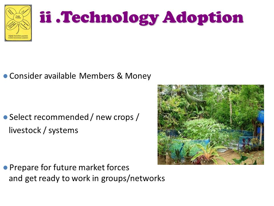ii .Technology Adoption