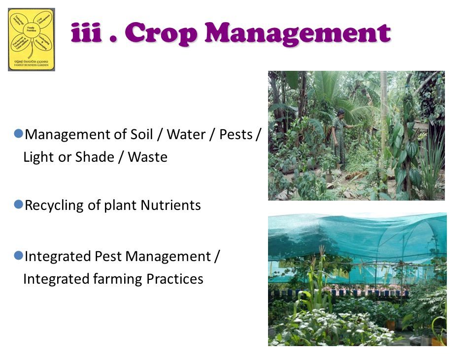 iii . Crop Management Management of Soil / Water / Pests /