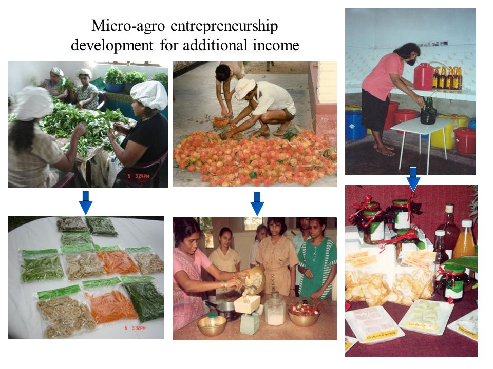 Micro-agro entrepreneurship development for additional income
