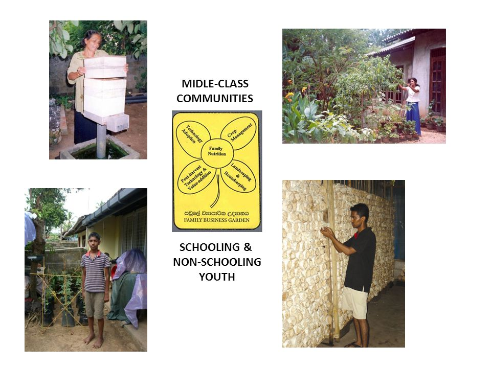 MIDLE-CLASS COMMUNITIES SCHOOLING & NON-SCHOOLING YOUTH