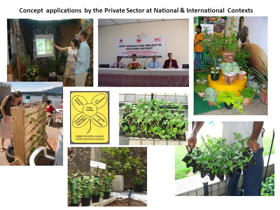 Concept applications by the Private Sector at National & International Contexts