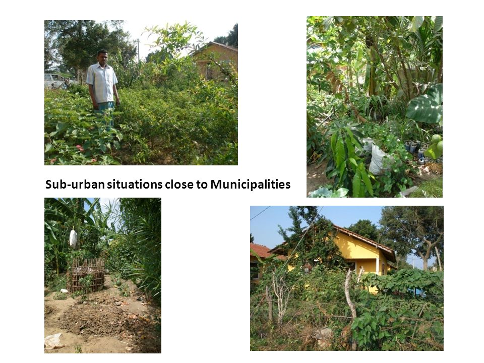 Sub-urban situations close to Municipalities