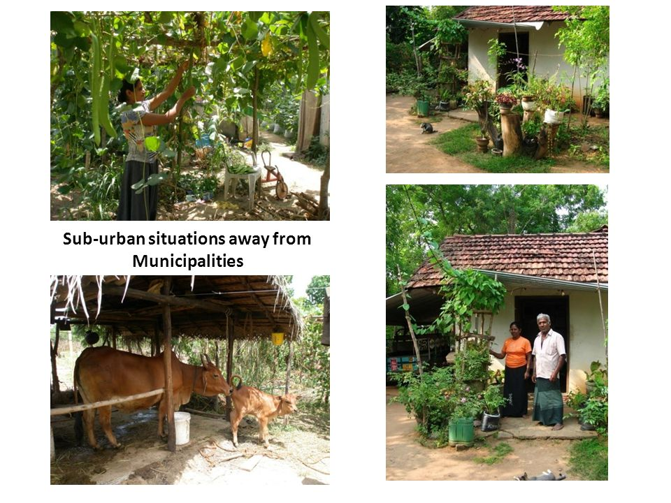 Sub-urban situations away from Municipalities