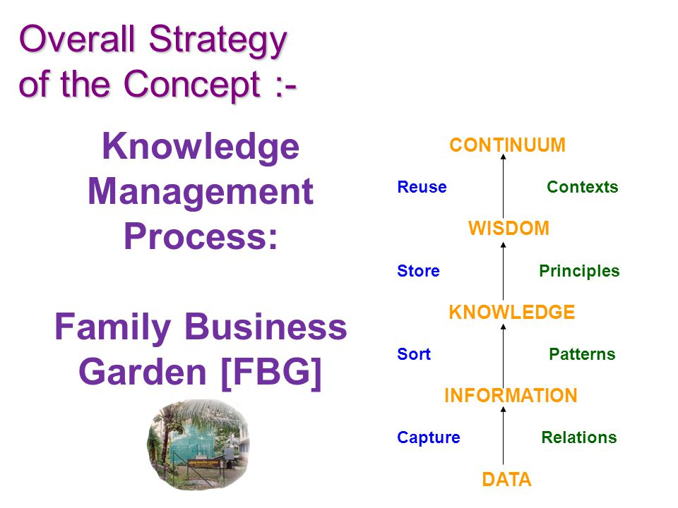 Knowledge Management Process: