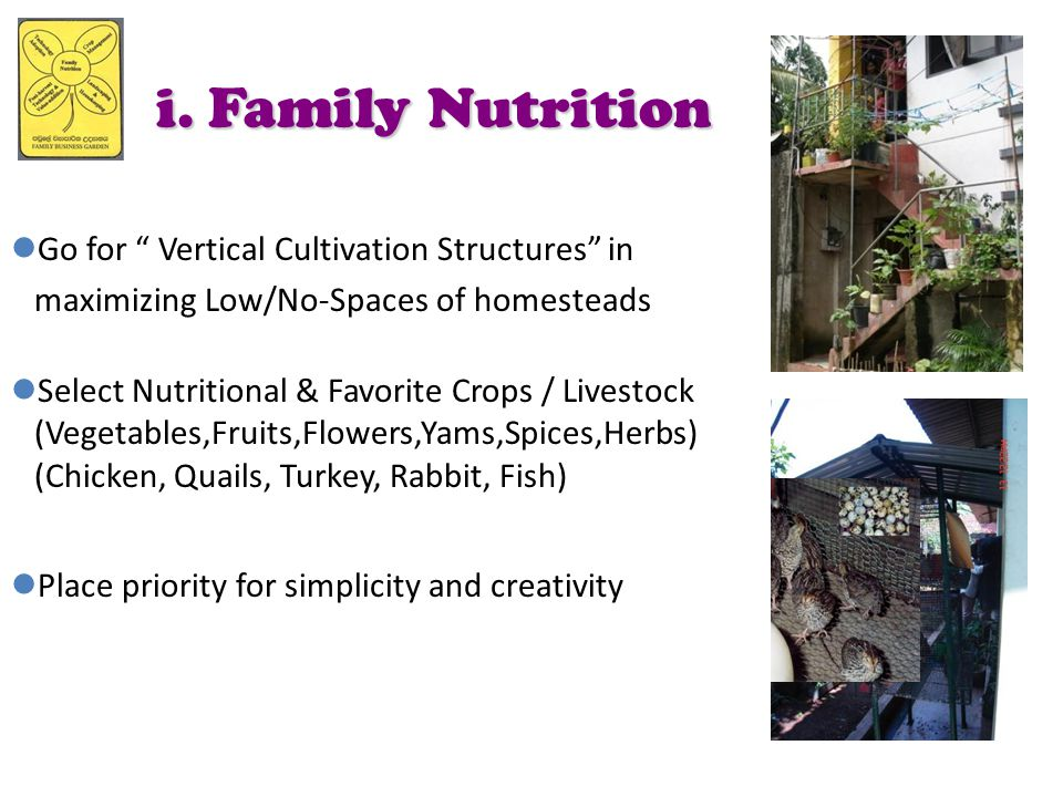i. Family Nutrition Go for Vertical Cultivation Structures in