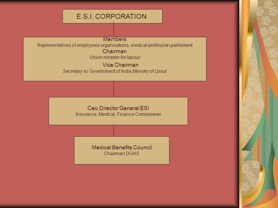E.S.I. CORPORATION Vice Chairman Members Chairman