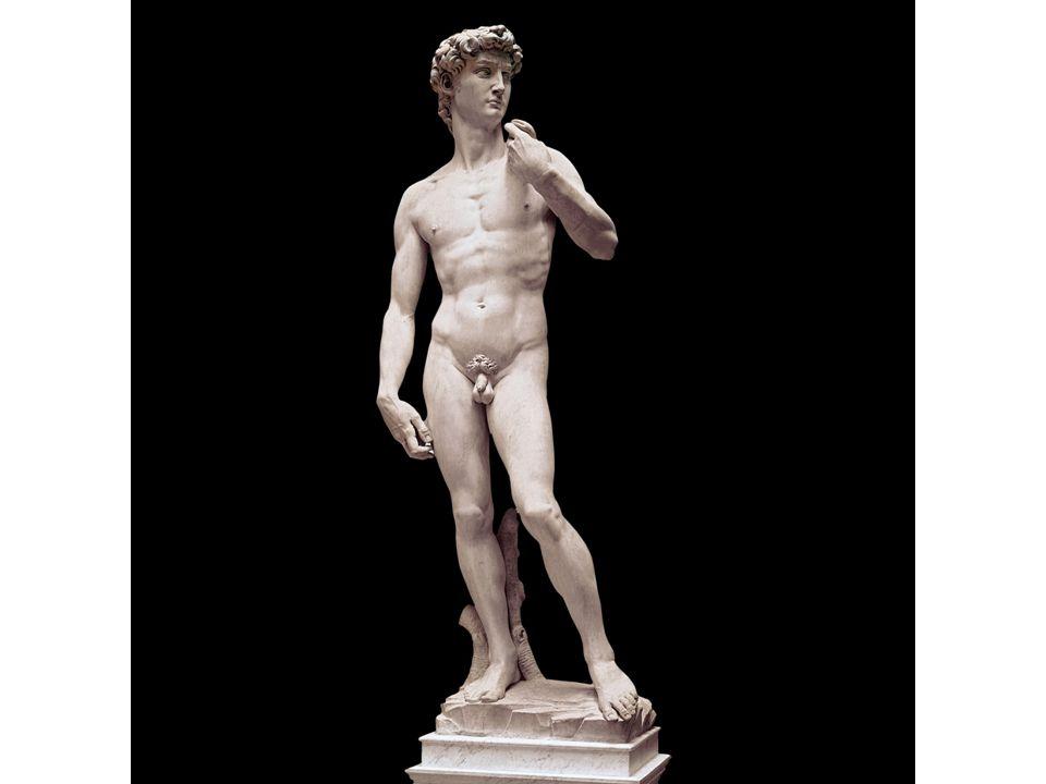 Michelangelo, David, 1501, Florence