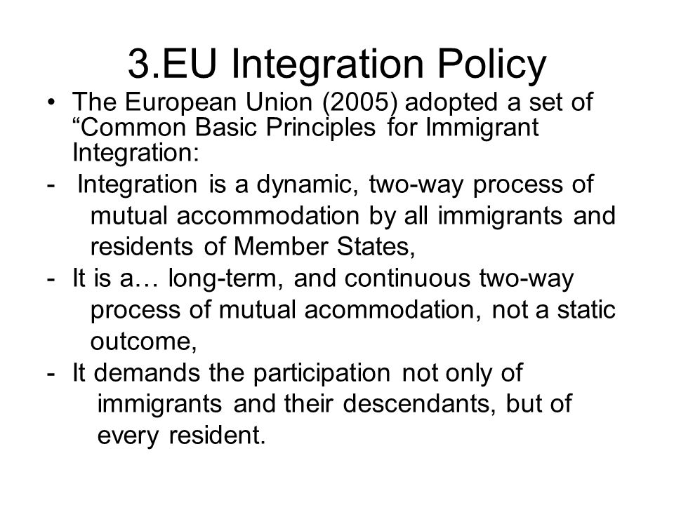 3.EU Integration Policy The European Union (2005) adopted a set of Common Basic Principles for Immigrant Integration: