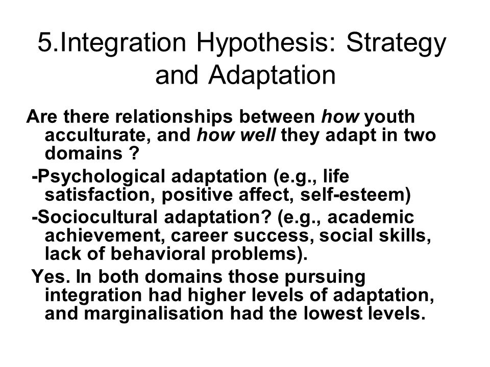 5.Integration Hypothesis: Strategy and Adaptation