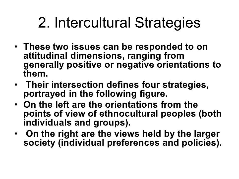 2. Intercultural Strategies