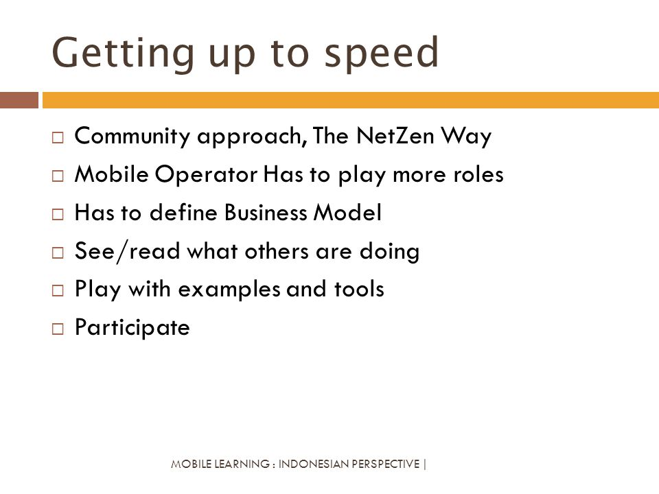 Getting up to speed Community approach, The NetZen Way