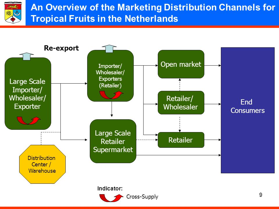 An Overview of the Marketing Distribution Channels for Tropical Fruits in the Netherlands