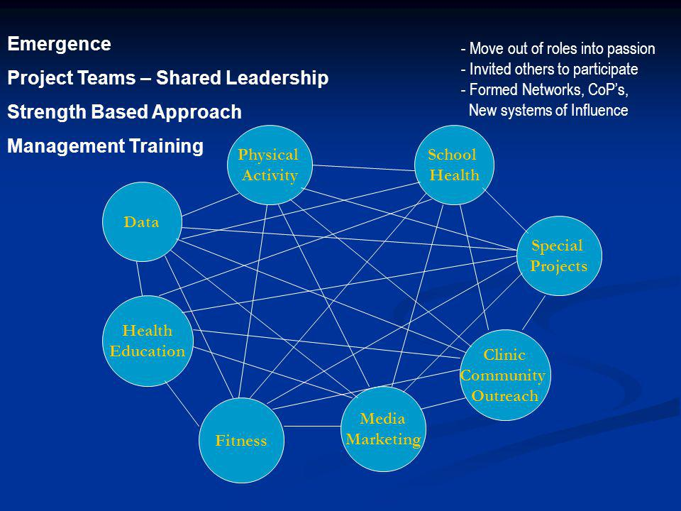 Project Teams – Shared Leadership Strength Based Approach